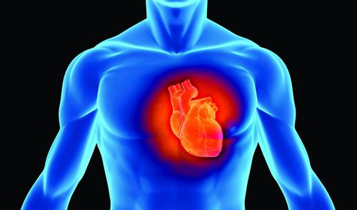 HeartJune13CROPPED